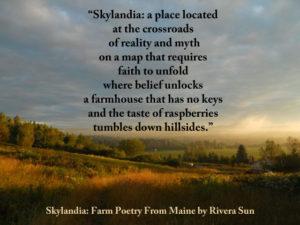 Skylandia-Raspberry-Meme